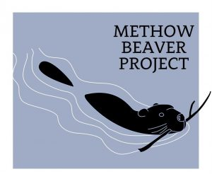 Methow Beaver Project